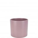 Bucket cylinder